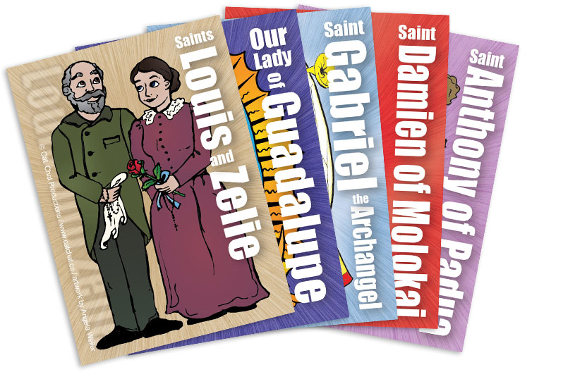 VBS6 saint cards